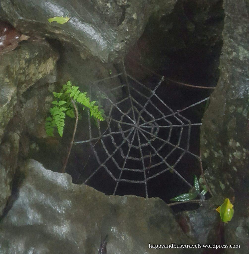 Limestone sinkhole
