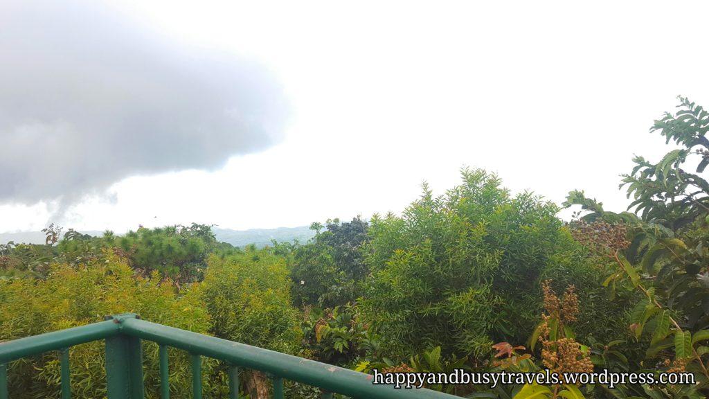 Mt. Bandilaan Viewing Deck