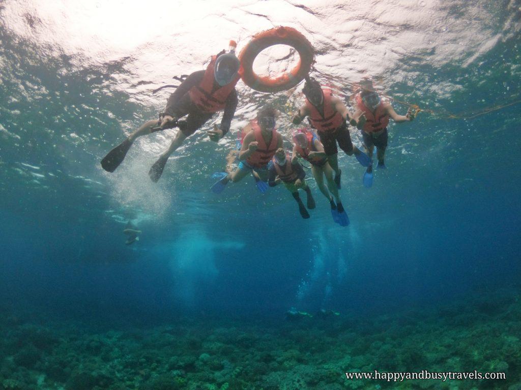 Apo Island Snorkeling