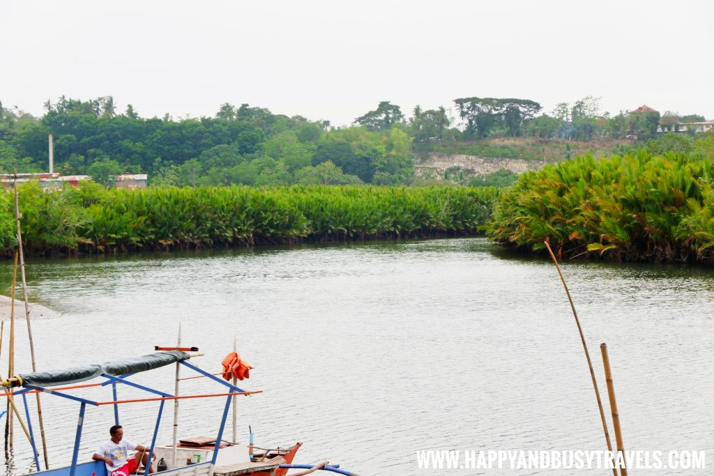 Maribojoc Mangrove Firefly Watching Bohol