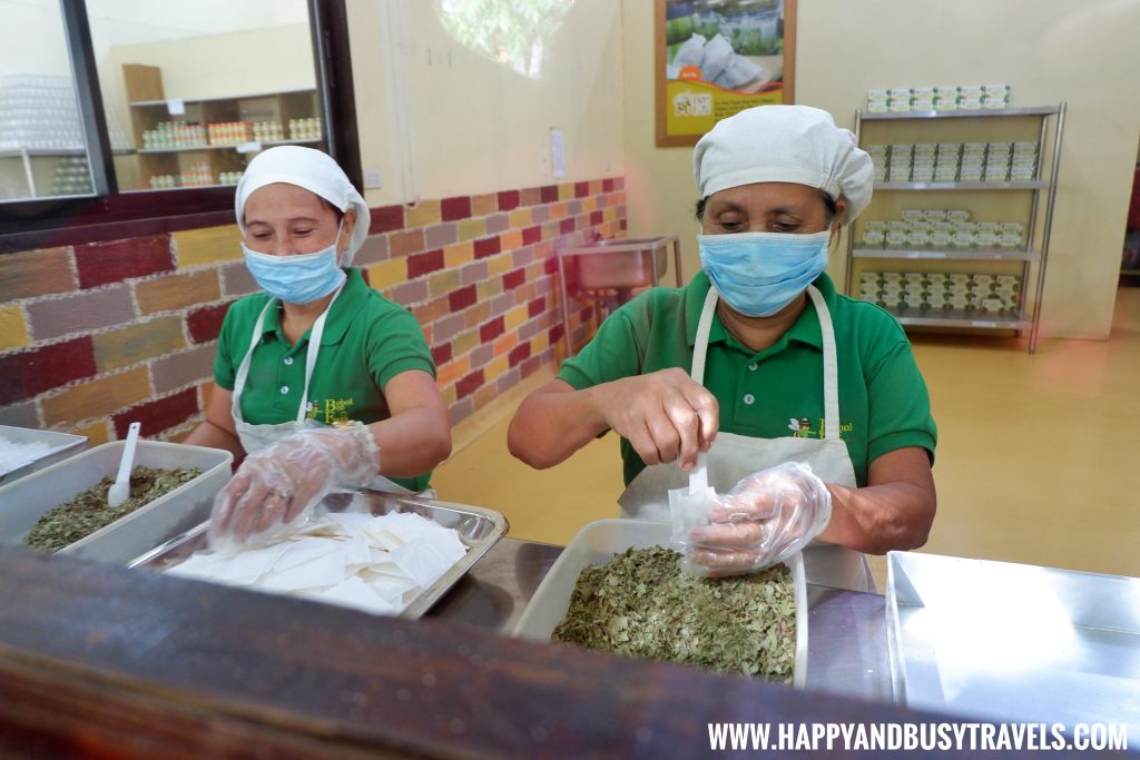Tea Repacking in Bohol Bee Farm Happy and Busy Travels