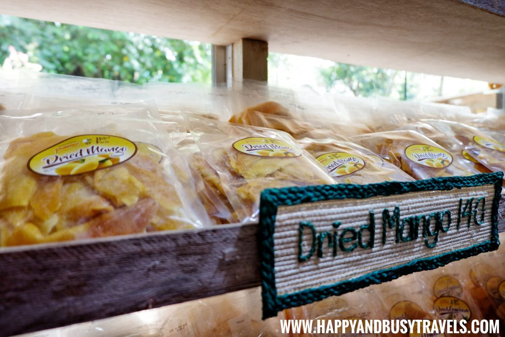 Dried Mango from the Buzz Shop in Bohol Bee Farm