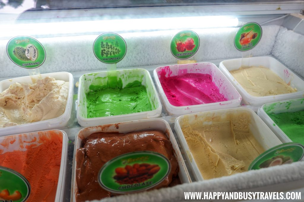 Bohol Bee Farm Ice Cream Happy and Busy Travels