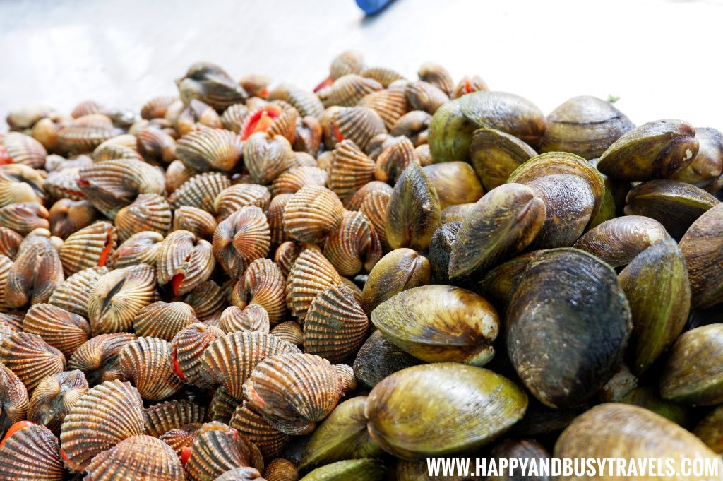 Clams in Seafood Paluto of Boracay Island Now open to the public review of Happy and Busy Travels