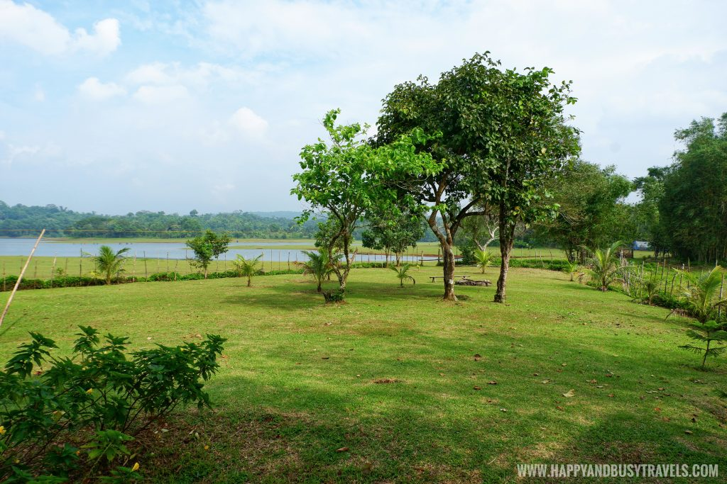 garden of Sierra Lake House Private Island for rent in Cavinti Laguna Happy and Busy Travels