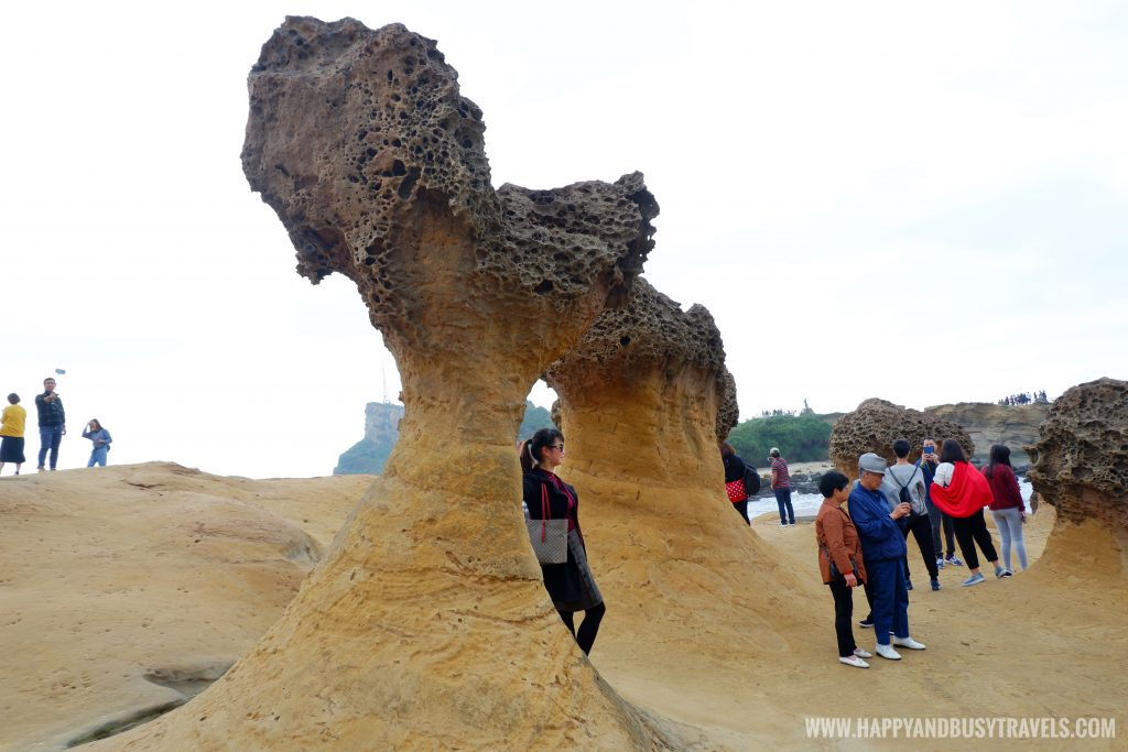 Dragon's head Yehliu Geopark 野柳地質公園 - Happy and Busy Travels to Taiwan