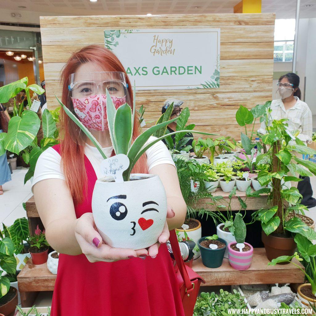 axs garden agave plant Happy Garden SM Dasmarinas Cavite Plantito plantita plants expo and fresh produce happy and busy travels experience