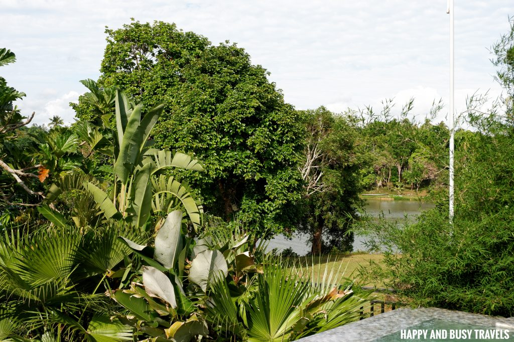 Baliraya Resort and Spa 38 - nature caliraya lake - Happy and Busy Travels to Laguna