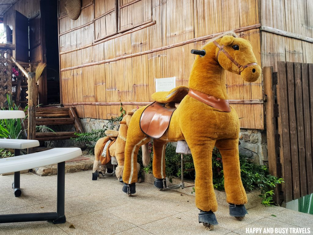 Sitio Gubat Amadeo Cavite 41 - horse - Surroundings - Happy and Busy Travels to Tagaytay for vacation staycation where to stay